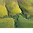Lomas Verdes, Kansas, EU - Foto Greg Allen