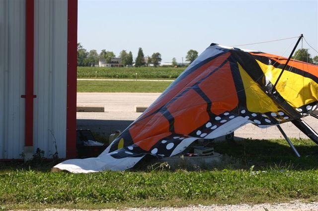 Ala Rota - Broken Wing