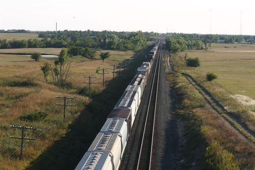 Siguiendo al tren - Foto Greg Allen