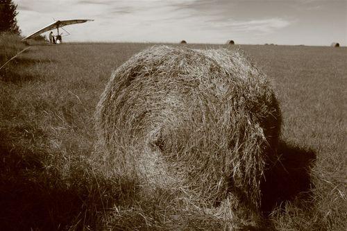 Aterrizaje en campos de cultivo, KS - Foto Luis Miranda